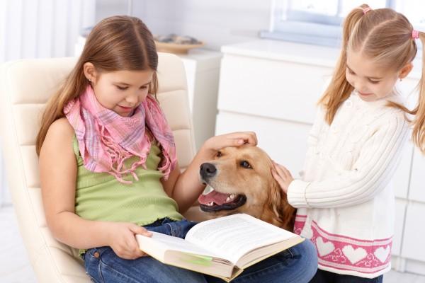 terapia_cachorro